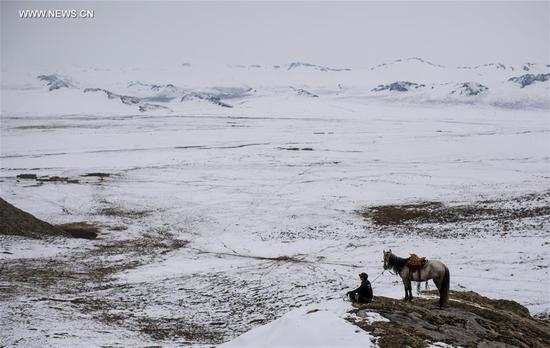 A herdsman's son, who has chosen not to go to college in order to help his parents, looks at distant sheep and home on Bayan Bulag grassland in Hejing County, northwest China's Xinjiang Uygur Autonomous Region, April 7, 2017. In April, Bayan Bulag grassland enters into its busiest season for sheep breeding. (Xinhua/Jiang Wenyao)