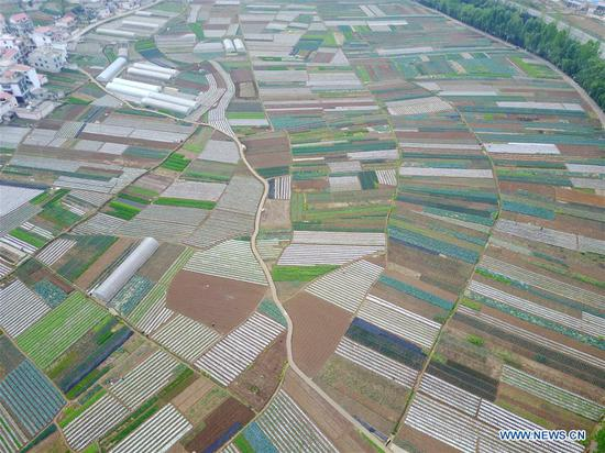 Aerial photo taken on April 20, 2017 shows a vegetable base at Dahe Township in Liupanshui City, southwest China's Guizhou Province. Farmers were busy with planting these days, as April 20 is Guyu (Grain Rain), one of the 24 solar terms created by ancient Chinese to carry out agricultural activities according to position of sun at the zodiacal circle. (Xinhua/Tao Liang)