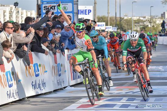 Nicola Ruffoni (Front) from Italy celebrates victory during the third stage of international cycling race tour of Croatia 2017 in Zadar, south Croatia, April 20, 2017. The third stage of the race, a total distance of 237km, started from Imotski and finished in Zadar. (Xinhua/Dino Stanin)