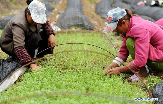 Two farmers work at a vegetable base at Dahe Township in Liupanshui City, southwest China's Guizhou Province, April 20, 2017. Farmers were busy with planting these days, as April 20 is Guyu (Grain Rain), one of the 24 solar terms created by ancient Chinese to carry out agricultural activities according to position of sun at the zodiacal circle. (Xinhua/Tao Liang)
