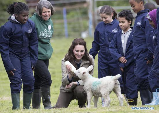 Britain's Duchess of Cambridge Catherine feeds a lamb during a visit to a farm run by the Farms for City Children charity in Arlingham, near Gloucester, Britain on May 3, 2017. (Xinhua)