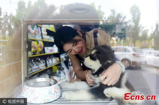 Zhang Ling and Jiao Xuena clean a hotel for dogs in Qingdao City, East China's Shandong Province, June 13, 2017. Jiao said she likes dogs and has to ask friends to help look after her dog when she travels. Figuring other pet owners may face the same dilemma, Jiao decided to invest 800,000 yuan (7,000) in opening a hotel for dogs with her friend Zhang. The facility provides cleaning, boarding and other services for dogs. (Photo/VCG)