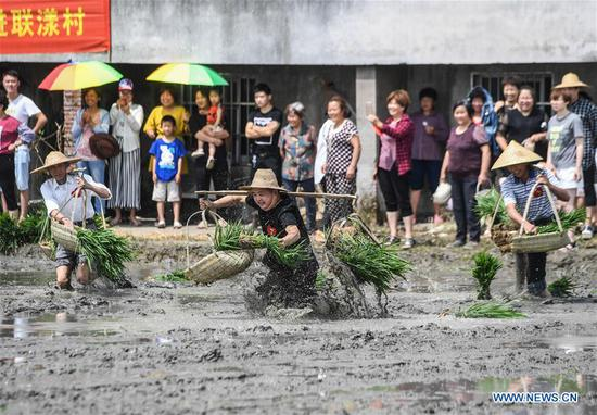 Farmers compete in transporting rice seedlings at an entertainment sports meeting in Lianyang Village of Huzhou City, east China's Zhejiang Province, June 18, 2017. (Xinhua/Xu Yu)