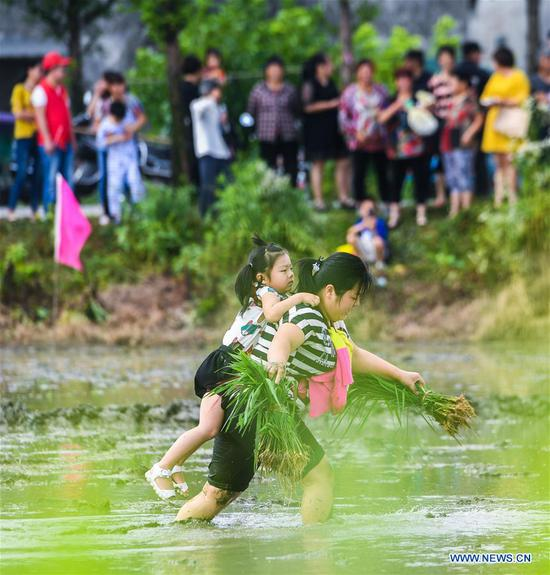 A farmer carrying a child on her back competes in transporting rice seedlings at an entertainment sports meeting in Lianyang Village of Huzhou City, east China's Zhejiang Province, June 18, 2017. (Xinhua/Xu Yu)