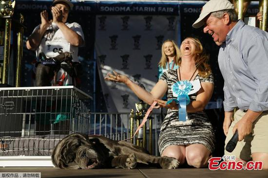 The title for the World's Ugliest Dog in 2017 went to a Neapolitan Mastiff on Friday, June 23, 2017. The 3-year-old dog, known as Martha, is described as