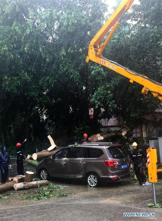 Working staff remove broken trees in Haikou, capital of south China's Hainan Province, July 16, 2017. China's national observatory on Sunday renewed a blue alert for typhoon Talas, which is expected to hit Hainan Province and the Beibu Gulf. (Xinhua)