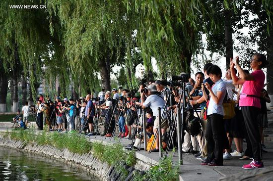 Citizens take photos of sunset landscape at Yuyuantan park in Beijing, capital of China, Aug. 7, 2017. Chinese solar term