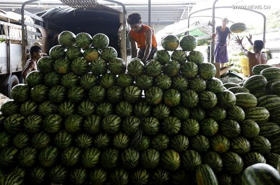 A worker arranges watermelons at the Thiri Mingalar wholesale market in Yangon, Myanmar, Sept. 6, 2017. About 95 percent of Myanmar's fruit export has gone to China during the current fiscal year, making the country Myanmar's main agricultural export market, official media reported Tuesday. Watermelon topped the list of fruit export to China with 139,400 tons worth 12 million U.S. dollars, followed by Mango with 30,523 tons and musk-melon with 21,749 tons. (Xinhua/U Aung)