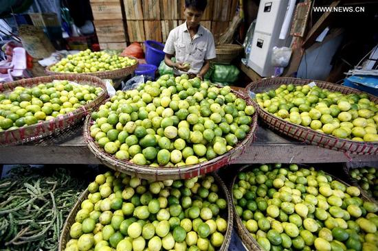A worker selects limes for sell at the Thiri Mingalar wholesale market in Yangon, Myanmar, Sept. 6, 2017. About 95 percent of Myanmar's fruit export has gone to China during the current fiscal year, making the country Myanmar's main agricultural export market, official media reported Tuesday. (Xinhua/U Aung)