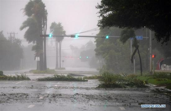 Trees and branches are seen on a street after being torn down by strong winds as hurricane Irma arrives, in Miami, Florida, the United States, on Sept. 10, 2017. Category Four Hurricane Irma on Sunday morning made landfall in the Florida Keys with gust wind speed of 171 km/h, according to the National Hurricane Center (NHC). (Xinhua/Yin Bogu)