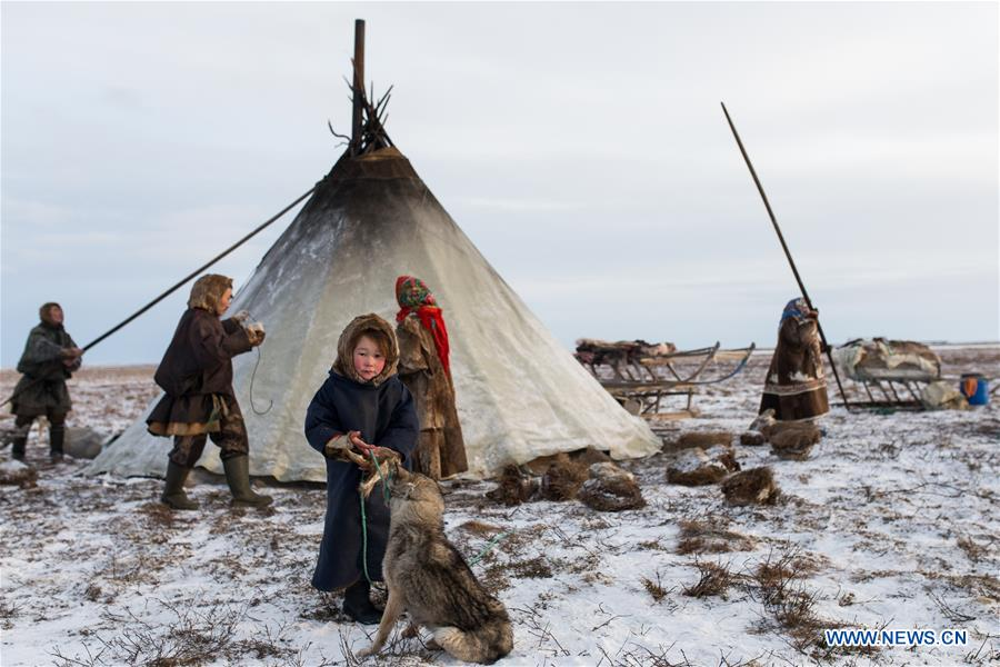 A Nenets girl stand in front of her camp, around 200km from Salekhard, Russia, on Nov. 4, 2017. The Nenets are an indigenous people in northern arctic Russia. According to the latest census in 2010, there are around 45,000 Nenets in the Russian Federation, most of them living in the Yamalo-Nenets Autonomous Okrug and Nenets Autonomous Okrug. (Xinhua/Bai Xueqi)