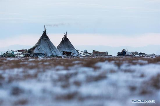Smoke rises from a Nenets family camp, around 200km from Salekhard, Russia, on Nov. 4, 2017. The Nenets are an indigenous people in northern arctic Russia. According to the latest census in 2010, there are around 45,000 Nenets in the Russian Federation, most of them living in the Yamalo-Nenets Autonomous Okrug and Nenets Autonomous Okrug. (Xinhua/Bai Xueqi)