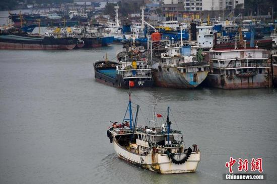 Boats anchor in Xingang harbor in Haikou, capital of south China's Hainan Province, before the typhoon Haikui arrives November 12, 2017. China's national weather observatory on Saturday renewed a blue alert as Typhoon Haikui continues to bring gales to the South China Sea. China has a four-tier color-coded system for severe weather, with red being the most serious, followed by orange, yellow and blue. (Photo: China News Service/ Luo Yunfei)