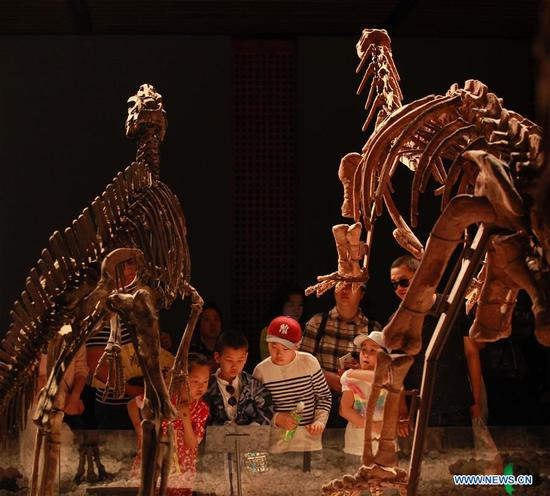 People look at dinosaur fossils at the Nanjing Museum in Nanjing, capital of east China's Jiangsu Province, May 3, 2019. People learn knowledge in various museums during the Labor Day holiday. (Xinhua/Liu Jianhua)