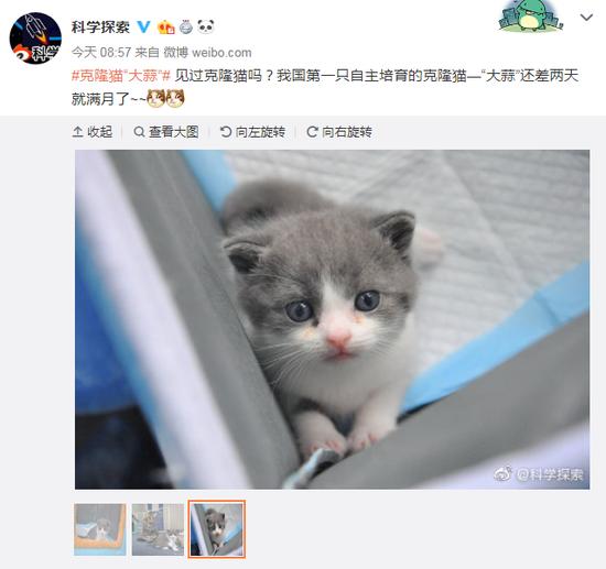 Screenshot form Weibo