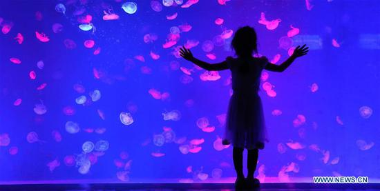 A child watches jellyfish at Royal Ocean Park in Fushun, northeast China's Liaoning Province, June 1, 2020. June 1 marks the International Children's Day. (Xinhua/Yao Jianfeng)