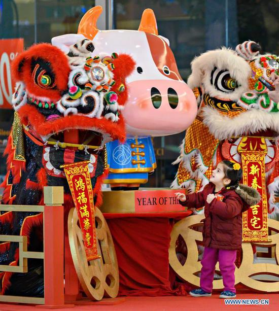 A child views Chinese Lunar New Year decorations at Aberdeen Centre in Richmond, British Columbia, Canada, Feb. 11, 2021. The year 2021 is the Year of the Ox according to the Chinese zodiac. With Chinese culture and food becoming increasingly popular, people not only in China, but all over the world also take part in the Chinese New Year celebrations. (Photo by Andrew Soong/Xinhua)