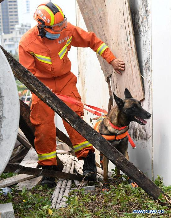 A rescuer and a dog participate in a drill in Haikou, south China's Hainan Province, April 30, 2019. A comprehensive drill on typhoon was held in Haikou to test the response ability to the emergency. (Xinhua/Yang Guanyu)