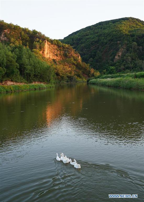 Photo shows the scenery of Ziwuling National Nature Reserve in Yan'an, northwest China's Shaanxi Province on Aug. 22, 2018. Yan'an, a former revolutionary base of the Communist Party of China (CPC), is no longer labeled