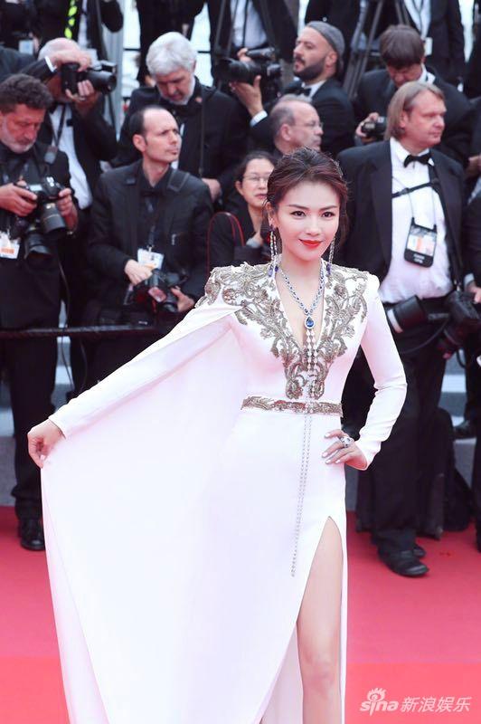 中国明星在第72届戛纳电影节红地毯上闪耀 3