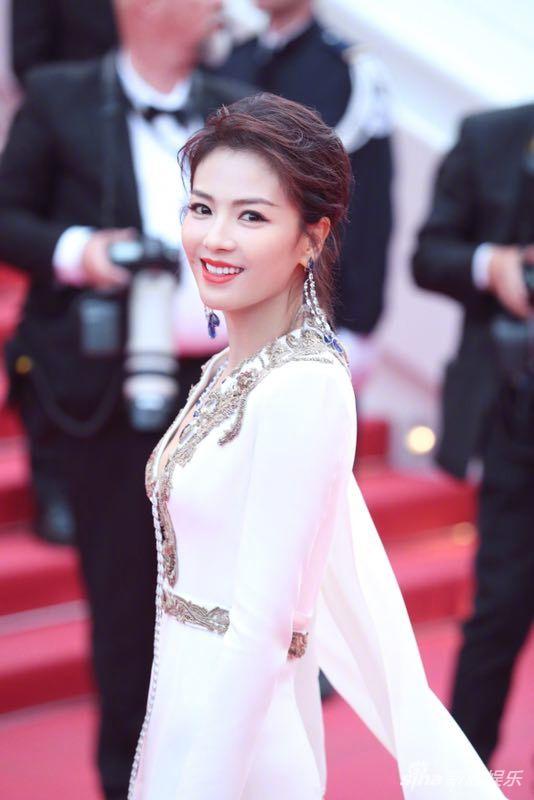 中国明星在第72届戛纳电影节红地毯上闪耀 4
