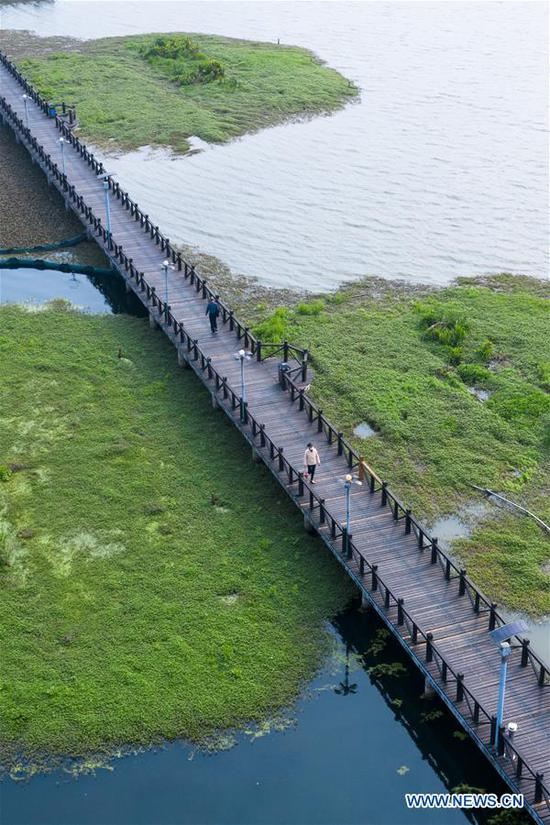 Aerial photo taken on March 25, 2020 shows people walking along a lakeside plank road in Ezhou City, central China's Hubei Province. Ezhou City lifted the closed-off management on residential communities and ended restrictions on traffic to resume people's daily life in an orderly manner on Wednesday. (Photo by Zhang Hongbin/Xinhua)