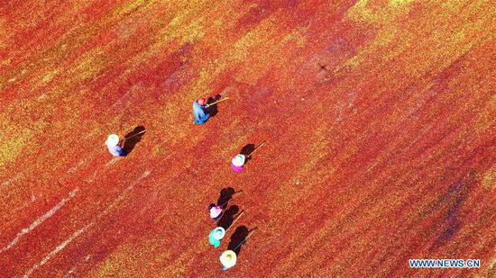 Aerial photo shows people airing the newly-harvested wild jujube in Yinan County, east China's Shandong Province, Sept. 6, 2018. (Xinhua/Du Yubao)