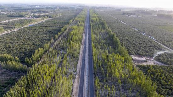 Aerial photo taken on Sept. 20, 2018 shows a part of Kekeya's greening project in Aksu, northwest China's Xinjiang Uygur Autonomous Region. (Xinhua/Hu Huhu)