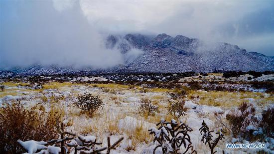 A blizzard blankets Albuquerque, New Mexico, the United States, on Dec. 28, 2018. Many highways of the state were closed with more snow expected here on Friday. (Xinhua/Richard Lakin)