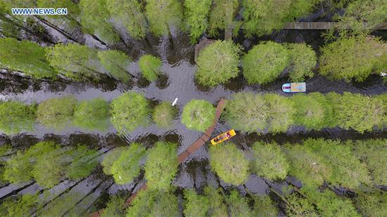 Aerial photo taken on May 2, 2019 shows tourists visiting the Luyang Lake wetland park in Yangzhou, east China's Jiangsu Province. (Xinhua/Meng Delong)