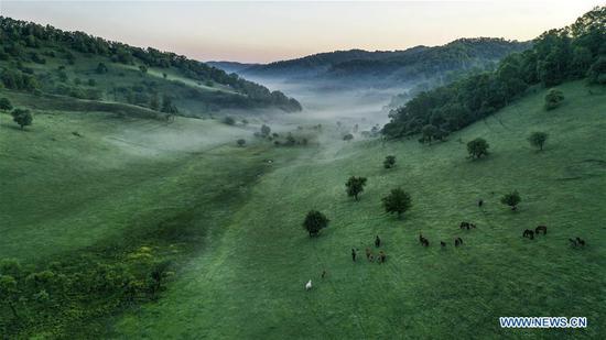 Aerial photo taken on June 13, 2019 shows the view of Guanshan Grassland at Longxian County in Baoji, northwest China's Shaanxi Province. (Xinhua/Tao Ming)