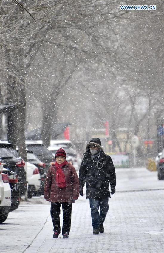 People walk in snow in Daxing District of Beijing, capital of China, Feb. 12, 2019. (Xinhua/Li Xin)