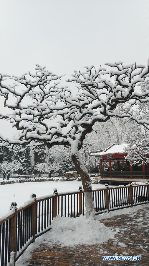 Photo taken with a mobile phone shows winter scenery of Xuanwuyiyuan Garden after snow in Beijing, capital of China, Jan. 6, 2020. (Xinhua/Li Bin)