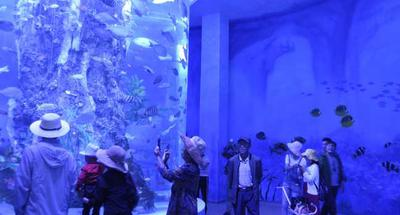 World's highest-altitude aquarium opens to public in Qinghai