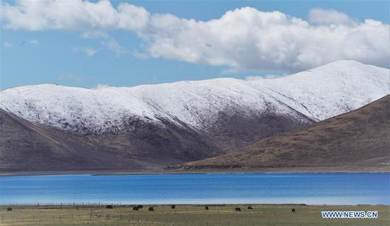 Photo taken on May 24, 2019 shows the scenery of the Yamzbog Yumco Lake in Nagarze County of Shannan, southwest China's Tibet Autonomous Region. The Yamzbog Yumco Lake is regarded as one of the three largest sacred lakes in Tibet. (Xinhua/Purbu Zhaxi)