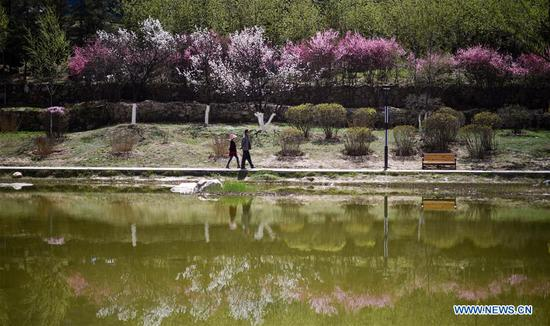 Citizens tour a park in Xining, northwest China's Qinghai Province, April 17, 2019. (Xinhua/Wu Gang)