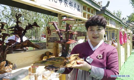A woman shows lucid ganoderma from Yanbian Korean Autonomous Prefecture of northeast China's Jilin at the Beijing International Horticultural Exhibition in Yanqing District of Beijing, capital of China, May 23, 2019. The expo kicked off its