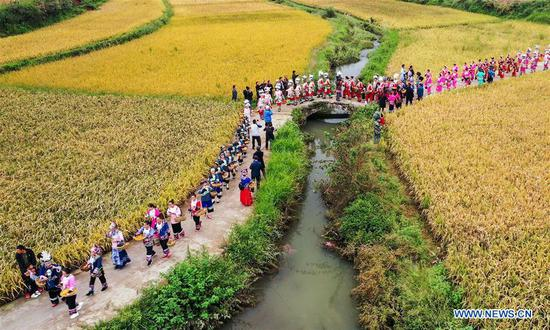 Aerial photo shows people touring for bumper harvest at Dangzao Village of Panshi Town in Tongren City, southwest China's Guizhou Province, Sept. 20, 2020. Various activities are being held across the country to welcome the third Chinese farmers' harvest festival which falls on Sept. 22. (Photo by Wu Weidong/Xinhua)