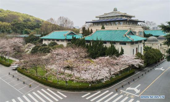 Aerial photo taken on March 16, 2020 shows spring scenery at the campus of Wuhan University in Wuhan, central China's Hubei Province. The campus of Wuhan University is not open to the public due to epidemic prevention and control works. The university on Monday organized a ten-day live broadcast to show cherry blossoms in spring in the campus. (Xinhua/Cheng Min)