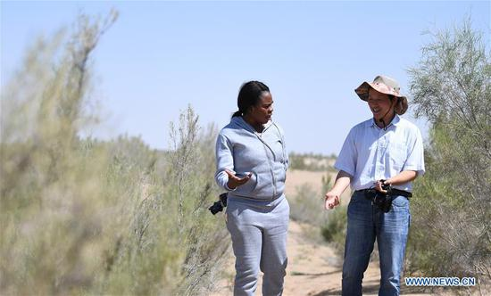 Nakanyala Elina Shekupe (L) and a staff member of Gansu Desert Control Research Institute visit a desertification combating demonstration zone in northwest China's Gansu Province, Aug. 25, 2018. Shekupe, 37, is an agricultural technology official from Namibia. She and 11 other students are taking part in a desertification combating and ecological restoration training course organized by China's Ministry of Commerce in Gansu.