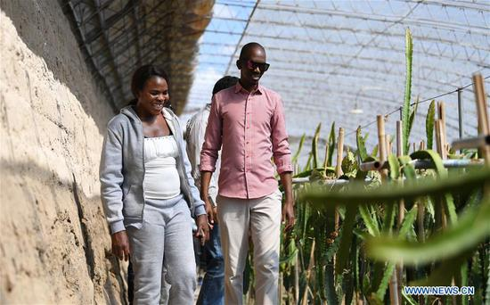 Nakanyala Elina Shekupe (L) and other students visit a greenhouse in Minqin County, northwest China's Gansu Province, Aug. 25, 2018. Shekupe, 37, is an agricultural technology official from Namibia. She and 11 other students are taking part in a desertification combating and ecological restoration training course organized by China's Ministry of Commerce in Gansu.