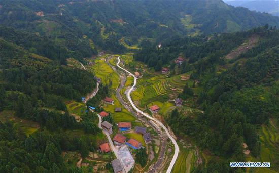 Aerial photo taken on Sept. 2, 2019 shows a view of Wuying, a village of Miao ethnic group under joint administration by Rongshui County in Guangxi Zhuang Autonomous Region and its neighbouring Congjiang County of Guizhou Province, during harvest season. Farmers of Miao ethnic group here are busy harvesting paddy rice as the weather is fair recently. (Xinhua/Huang Xiaobang)