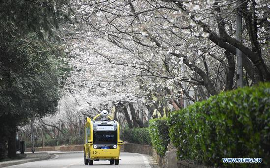 A vehicle with 5G equipment collects signal during a live broadcast of cherry blossoms at Wuhan University in Wuhan, capital of central China's Hubei Province, March 16, 2020. The campus of Wuhan University is not open to the public due to epidemic prevention and control works. The university on Monday organized a ten-day live broadcast to show cherry blossoms in spring in the campus. (Xinhua/Cheng Min)