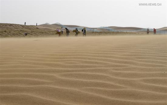 Desertification control workers make straw checkerboard barriers in the Tengger Desert along the construction site of the Qingtongxia-Zhongwei section of the Wuhai-Maqin highway in northwest China's Ningxia Hui Autonomous Region, Aug. 27, 2020. The Qingtongxia-Zhongwei section of the Wuhai-Maqin highway is under construction, of which an 18-kilometer-long section going through the Tengger Desert is the first desert highway in Ningxia. A desertification control team has worked along the highway construction site, using straw checkerboard barriers and planting vegetation to stop the dunes from moving or expanding. (Xinhua/Feng Kaihua)