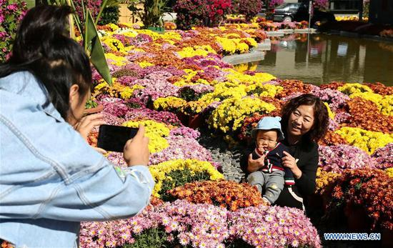 Tourists pose for photos at a chrysanthemum exhibition held in Xiaochang Village, Dachang Hui Autonomous County of north China's Hebei Province, on Oct. 8, 2019, also the day of Cold Dew, one of the 24 traditional Chinese solar terms. (Xinhua/Wang Xiao)