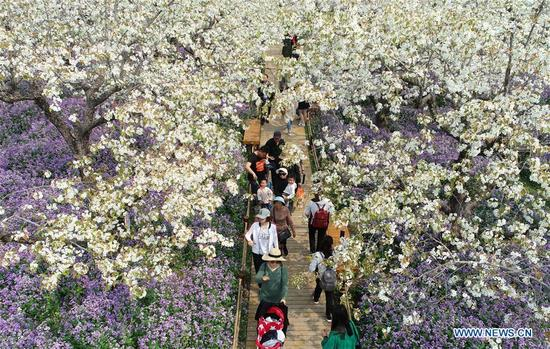 Tourists view pear flowers and orchid blossoms at Santaishan Forest Park in Suqian City, east China's Jiangsu Province, April 3, 2018. (Xinhua/Zhou Guoqiang)