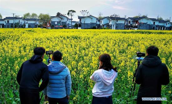 Visitors take photos of rape flowers in Wuxing Village of Chengdu, southwest China's Sichuan Province, March 9, 2018. Rural tourism has been stressed as a crucial part of China's strategies of rural vitalization. (Xinhua/Jiang Hongjing)