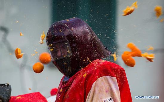 A member of a team is hit by oranges during an annual historical carnival