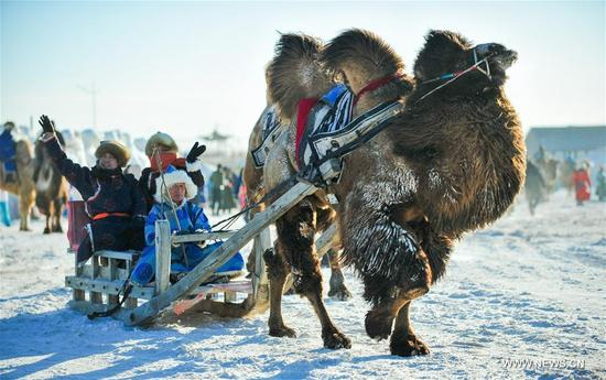 Herdsmen take a camel-sled to attend the camel fair in Sunite Right Banner, north China's Inner Mongolia Autonomous Region, Jan. 9, 2018. A camel fair, a local traditional festival including camel race and camel beauty contest, was held in the Banner on Tuesday. More than 200 camels took part in the fair. (Xinhua/Peng Yuan)