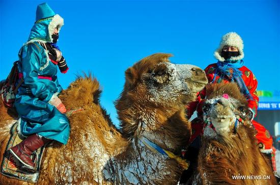 Herdsmen ride camels to take part in a camel beauty contest in Sunite Right Banner, north China's Inner Mongolia Autonomous Region, Jan. 9, 2018. A camel fair, a local traditional festival including camel race and camel beauty contest, was held in the Banner on Tuesday. More than 200 camels took part in the fair. (Xinhua/Peng Yuan)